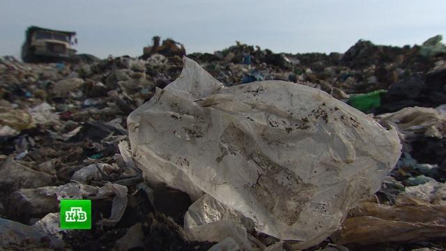 В Калининградской области ликвидируют крупнейший в регионе мусорный полигон