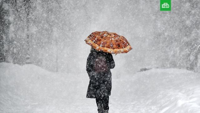Снег и пасмурно: синоптики рассказали о погоде в Московском регионе
