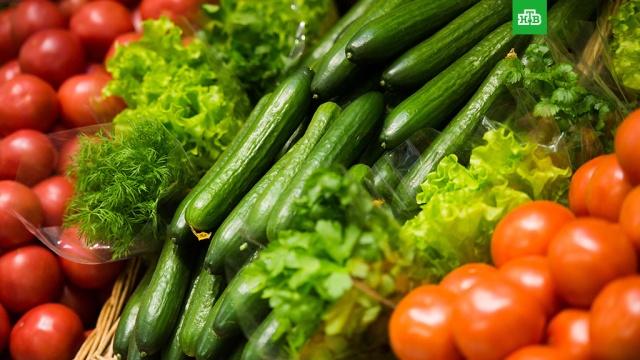 Ввоз овощей и фруктов из Абхазии в Россию прекращен из-за мраморного клопа