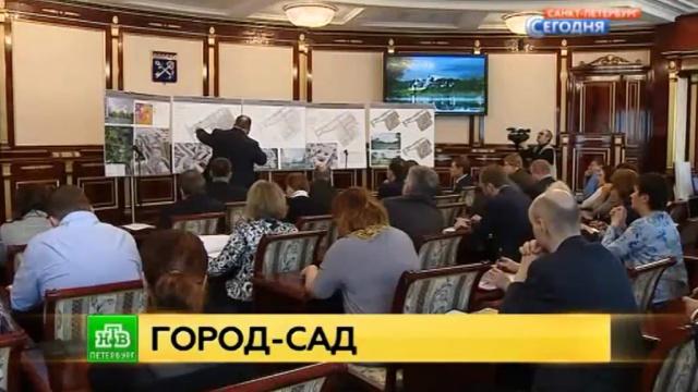 Градсовет Ленобласти раскритиковал, но одобрил проект застройки Сертолова