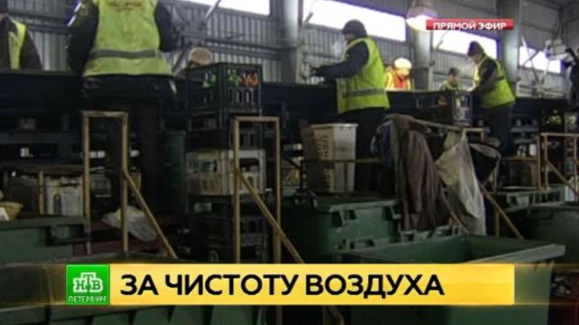 Сотни петербуржцев просят губернатора не строить мусороперерабатывающие заводы в Каменке