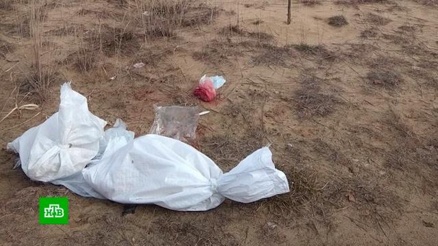 Разбросанные по кладбищу человеческие останки шокировали жителей города Кулебаки