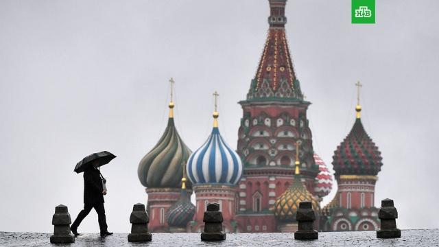 Тепло и дождь: синоптики рассказали о погоде в Московском регионе