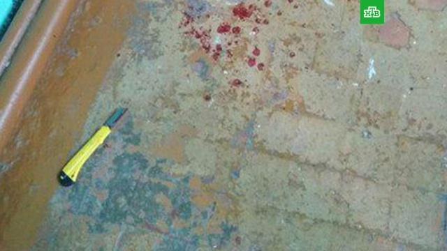 Росгвардия: школьник в Стерлитамаке орудовал канцелярским ножом