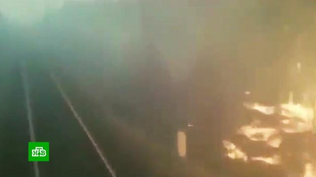 Поезд промчался сквозь горящий лес в Хабаровском крае: видео