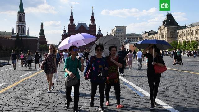 Синоптики обещают москвичам дождь с грозой и сильным ветром