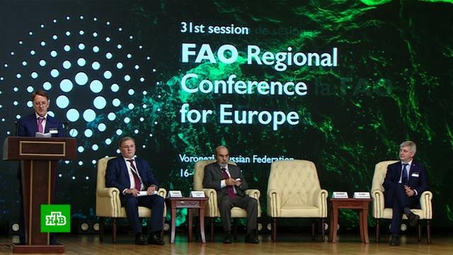 В Воронеже обсудят тренды экологизации сельского хозяйства