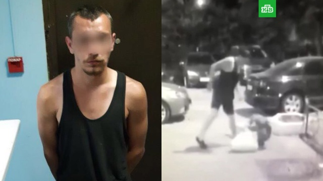 На юге Москвы мужчина с шилом напал на 70-летнюю женщину: видео