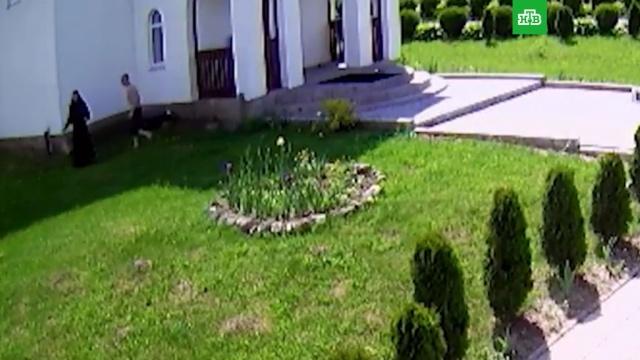 Мужчина напал на монахинь и бросил картину в полицейского под Калининградом: видео