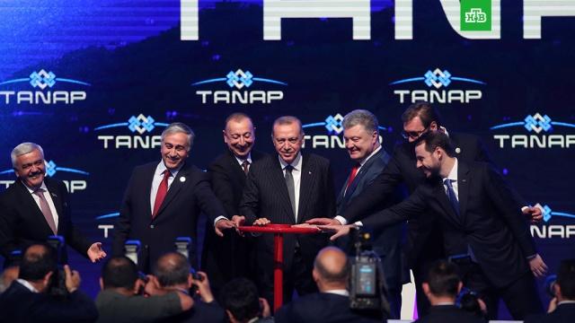 Эрдоган и Алиев запустили газопровод TANAP в присутствии Порошенко