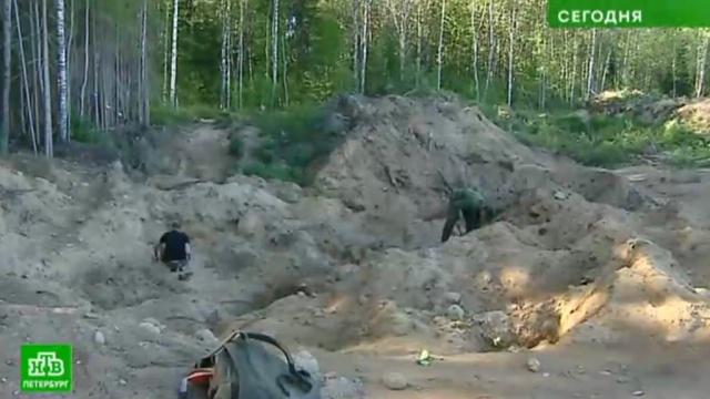 Поисковики заявили об уничтожении братских могил у песчаного карьера в Ленобласти