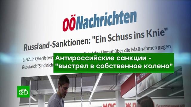 """""""Выстрел в колено"""": австрийский бизнес выступил против антироссийских санкций"""