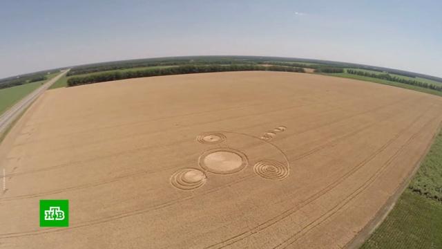 Зеленые человечки и круги на полях: как уфологи отмечают профессиональный праздник