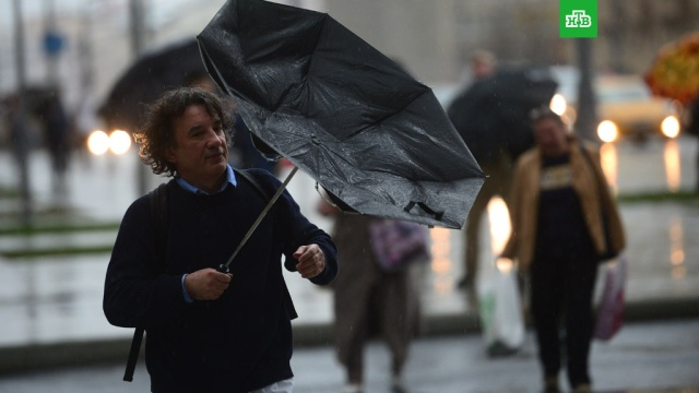 Уровень погодной опасности в Московском регионе повысили до оранжевого