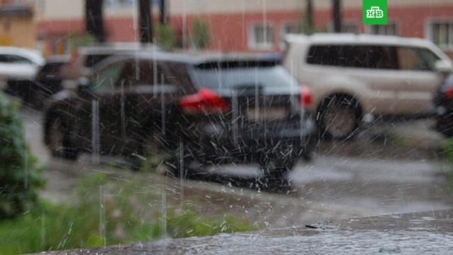 Дожди и грозы: синоптики рассказали о погоде в Московском регионе