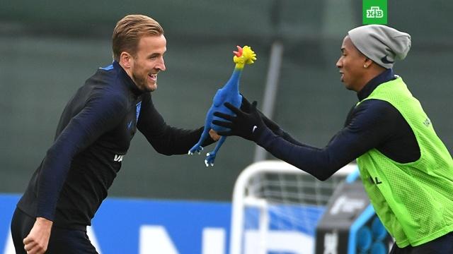Сборная Англии перед полуфиналом тренируется с резиновой курицей вместо мяча